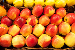 Apple. Ripe apples in a wattled basket Royalty Free Stock Images