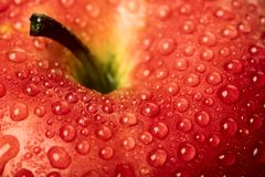 Apple. Close up of the Red apple covered dew Stock Photos