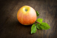 Apple Photo stock