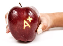 Apple with A+. Child holding red delicious apple with A+ written on it. Image is isolated on white background Stock Image