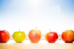 Apple royaltyfri fotografi