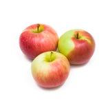 Apple Zdjęcie Stock