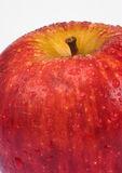 Apple. Red apple royalty free stock images