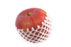 Apple Obraz Royalty Free