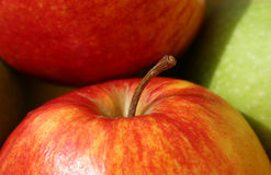Apple. Close up in a sunny day Royalty Free Stock Photography