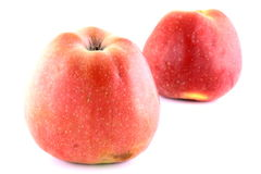 Apple Fotografie Stock