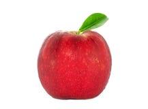 Apple Стоковые Изображения RF
