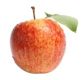 Apple. Ripe apple on a white background Royalty Free Stock Images