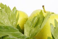 Apple. Very fresh and tasty apples stock photos