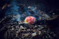 Apple Zdjęcie Royalty Free
