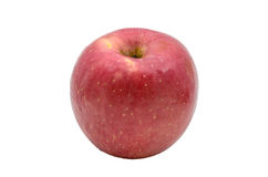 An Apple. Royalty Free Stock Image