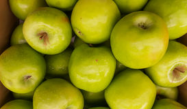 Apple Images libres de droits