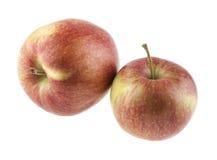Apple Στοκ Εικόνες