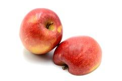 Apple Στοκ εικόνες με δικαίωμα ελεύθερης χρήσης