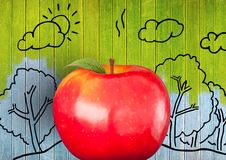 apple against colourful painted wood with nature drawings Stock Image