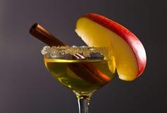 Apple-alcoholische drank met kaneel Royalty-vrije Stock Foto