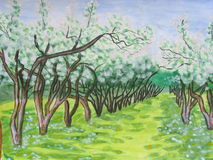Apple alley in blossom. This is a photocopy of my own picture, alley of apple trees in blossom in spring stock illustration
