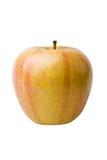 Apple amarillo-naranja Imagen de archivo libre de regalías