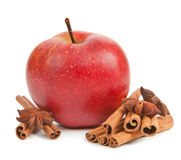 Apple, anise and cinnamon Stock Images