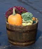 Apple antique Bucket comme planteur photographie stock
