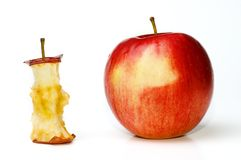 Apple and Aple Core Stock Image