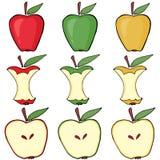 Apple, apple core, half apple Royalty Free Stock Photos