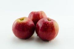 Apple apples. Fresh apple apples - healthy food Stock Image