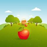 Apple arbeiten Illustration im Garten vektor abbildung