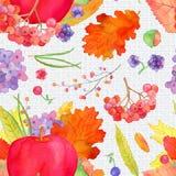 Apple arrangement seamless pattern, fall harvest watercolor. Apple arrangement seamless pattern, fall harvest watercolor Thanksgiving  wallpaper with pumpkins Stock Image