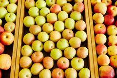 Apple background. Apple assortment in special wooden boxes that can be used as background Royalty Free Stock Image
