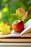 Apple auf Buch. Stockbild