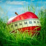 Apple auf dem Gras Lizenzfreies Stockfoto