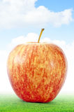 Apple auf Gras Lizenzfreie Stockfotos