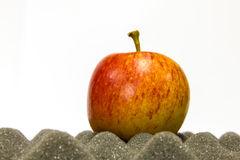 Apple auf Schaumgummi lizenzfreies stockfoto