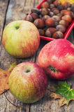Apple autumn harvest. And fallen leaves Royalty Free Stock Photos