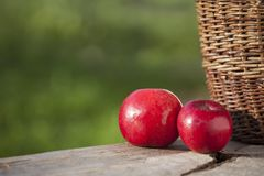 Apple in autumn on table with basket detail. Fresh two apples in autumn on wooden deck table with basket detail and natural lihting Royalty Free Stock Photos