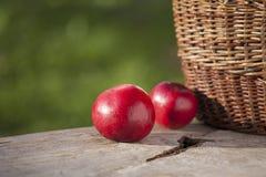 Apple in autunno sulla tavola con il canestro dettaglia Fotografia Stock