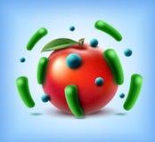 Apple avec des bactéries Images stock