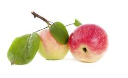 Apple avec des lames Images libres de droits