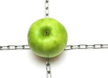 Apple avec des réseaux Image libre de droits