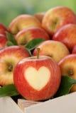 Apple avec le coeur dans une boîte en automne aiment le sujet Photos libres de droits