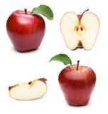 Apple bär frukt med bladet royaltyfri foto