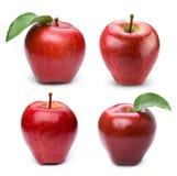 Apple bär frukt med bladet Arkivbilder