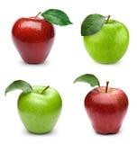 Apple bär frukt med bladet arkivfoto