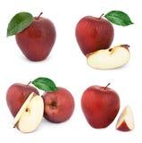 Apple bär frukt med bladet Fotografering för Bildbyråer