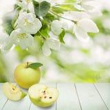 Apple bär frukt på vitt trä ställer ut bakgrund Arkivfoto