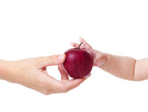 Apple for baby. Mom gives red apple baby Royalty Free Stock Image