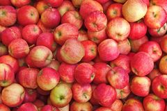 Apple background Royalty Free Stock Photos