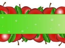 Apple bakgrund vektor illustrationer