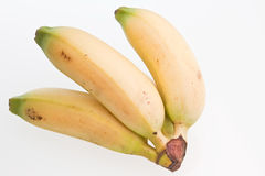 Apple Bananas. A bunch of apple, or finger, bananas against a white background Stock Image